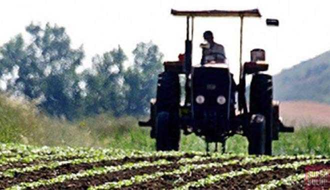 İstanbul'da satılık 10 dönüm tarım arazisi