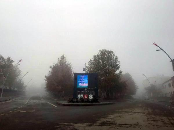 Muş'ta sis ve soğuk etkili oldu